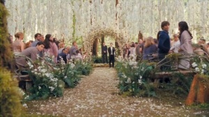 Twilight-Saga-Breaking-Dawn-Part-1-Wedding