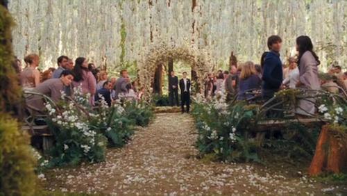 Twilight-Saga-Breaking-Dawn-Part-1-Wedding